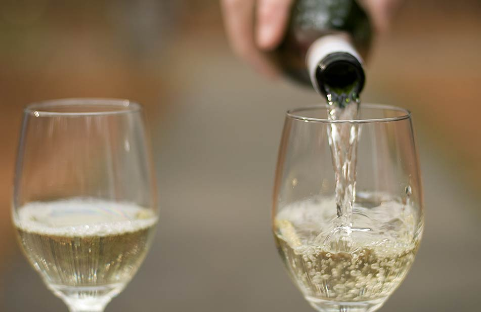 Romantic-picnic-wine