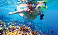 snorkeling in cancun