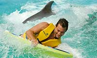 man on boogie board with dolphin
